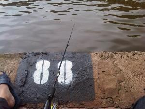 Pemancingan Telaga Buperta/Jambore Cibubur