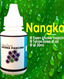 essen nangka