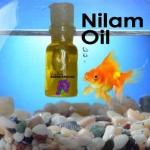 minyak nilam